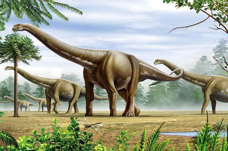 dinossauro mais alto