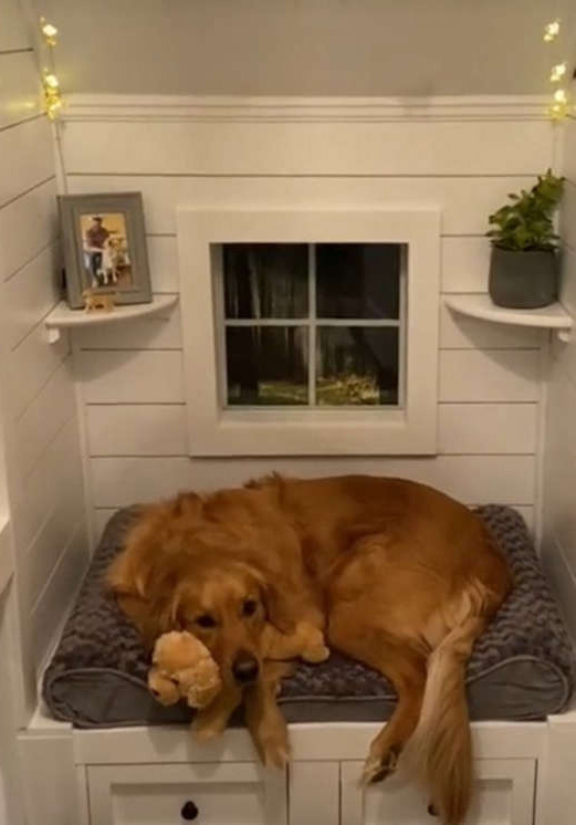 Casinha de cachorro de R$ 26 mil