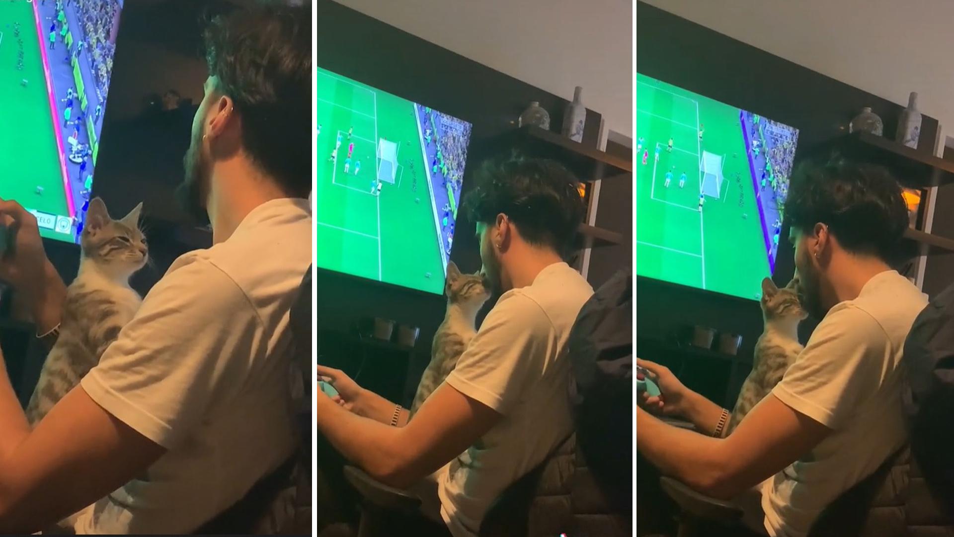 Gatinho ciumento quer a atenção do papai durante partida de videogame