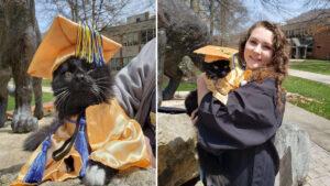 Gatinho se graduou na faculdade ao lado da mãe por seu apoio emocional