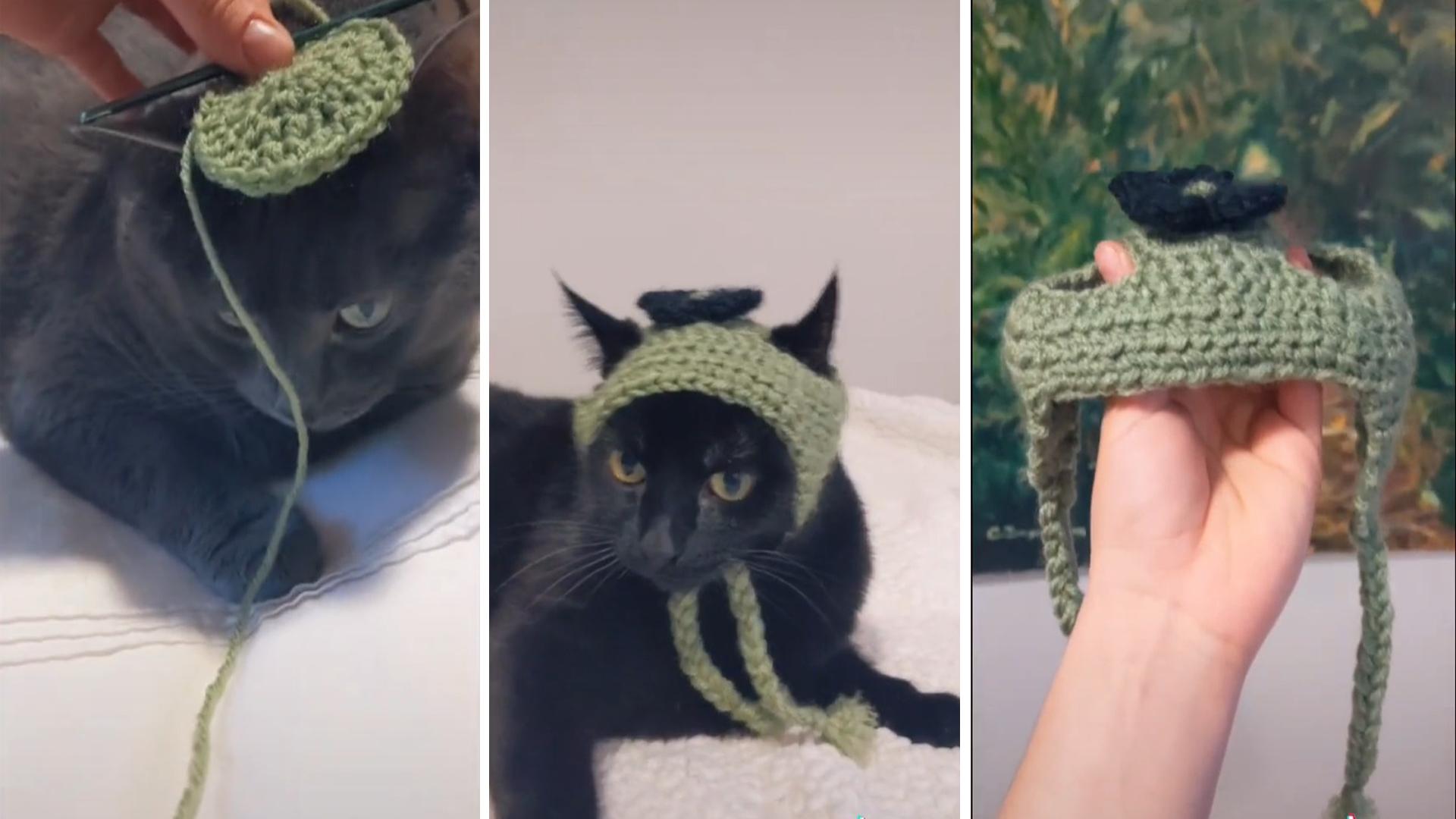Mulher faz chapeuzinhos para gatos com espaço para as orelhas