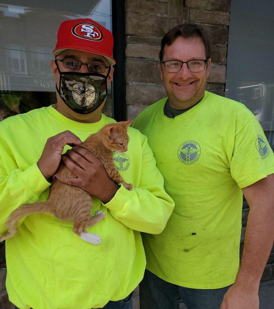 Trabalhadores encontraram um gatinho