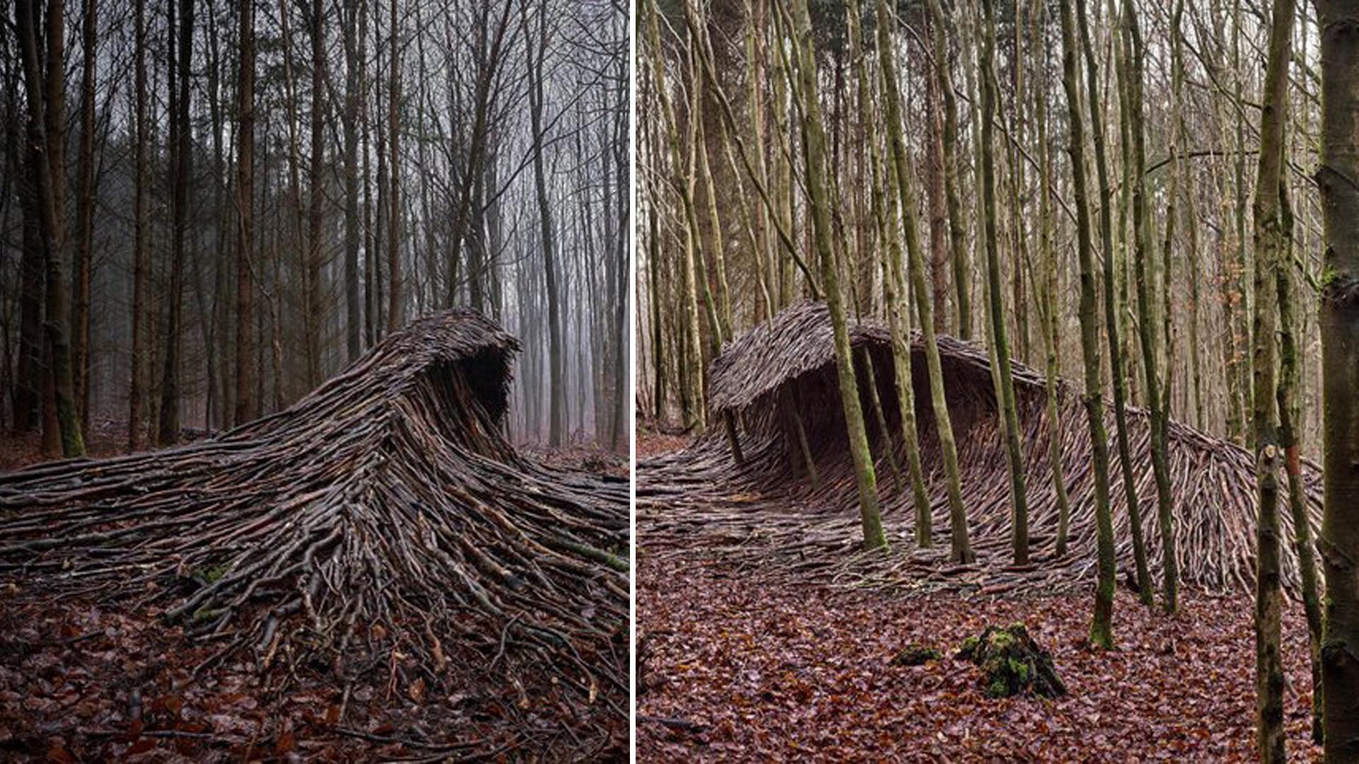 Árvores mortas formam ondas