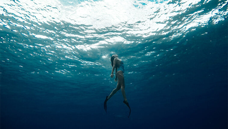 Curiosidades sobre o oceano