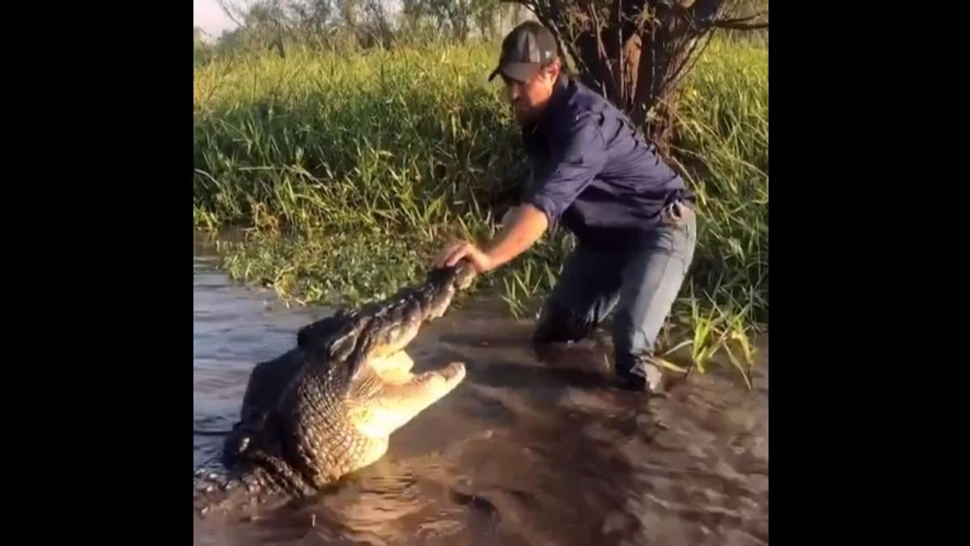 Homem brinca com crocodilo