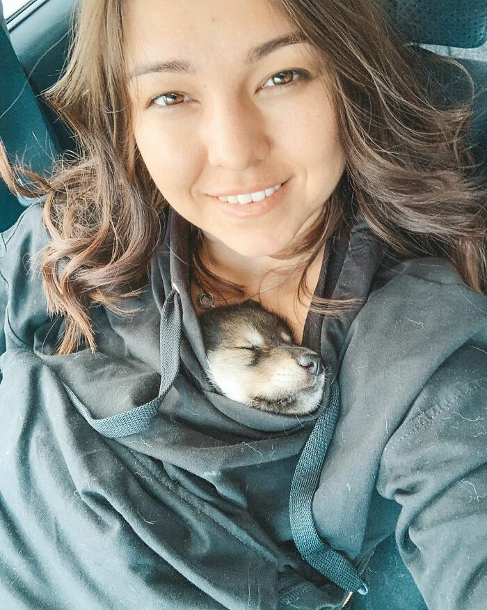 Mulher adota filhote de lobo 3