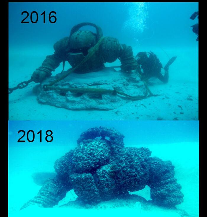 fotos fundo do mar