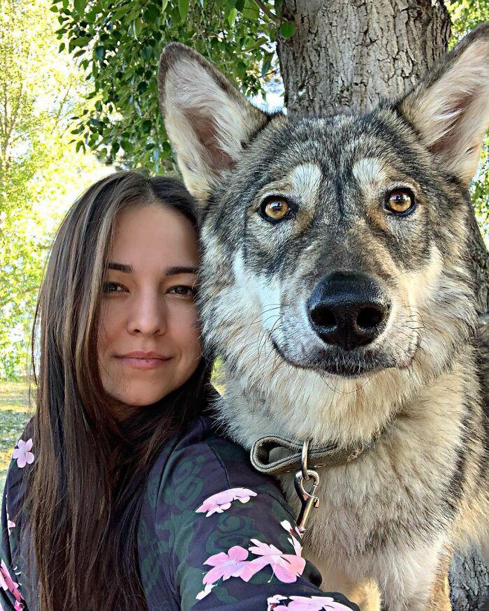 lobos gigantes