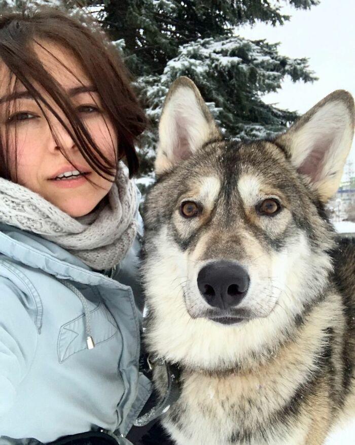 mulher adotou lobo