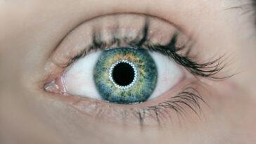 tamanho das pupilas e inteligência