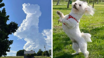 Mulher olha para o céu