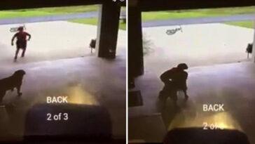Menino entra escondidona garagem de vizinhos cachorro