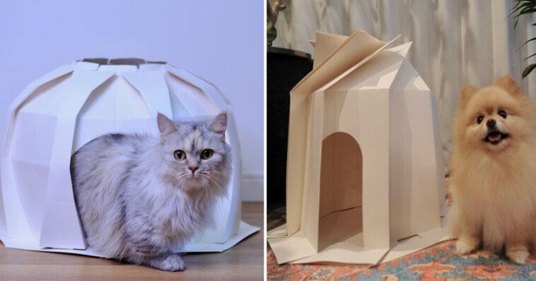 Casinhas para cachorro e gato