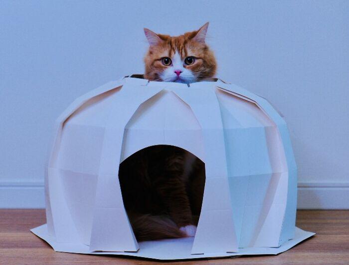 Casinhas para cachorro e gato origami