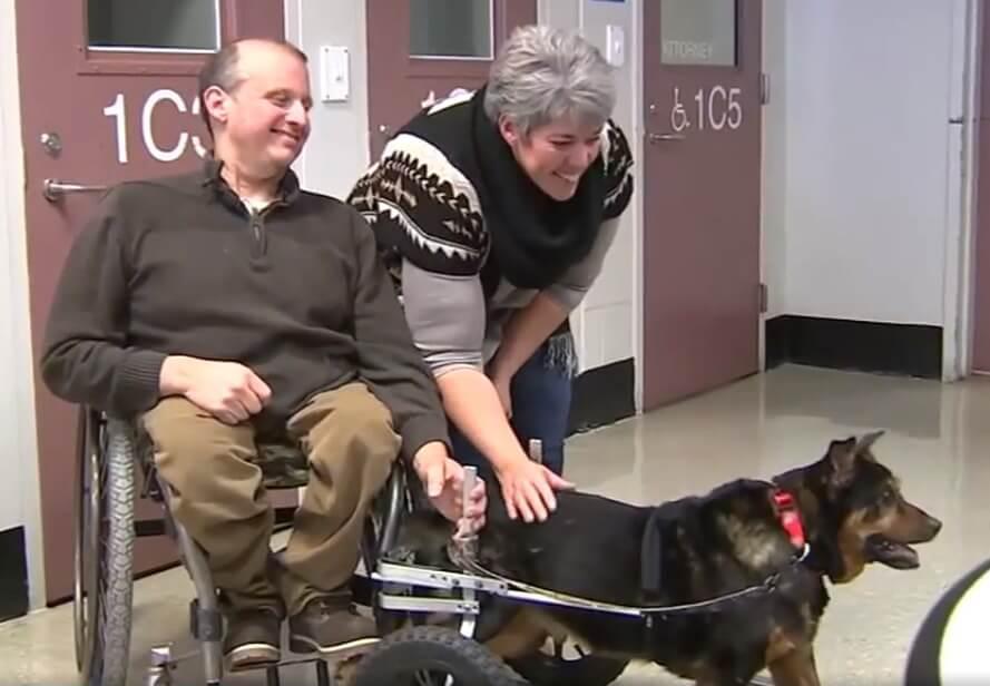 Homem cadeirante adota cachorro